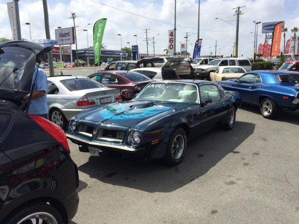 1975 pontiac firebird trans am (4)