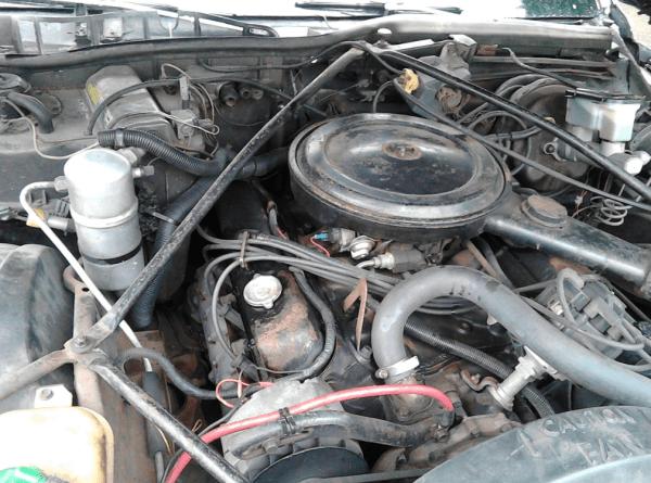 Cadillac 1981 COAL engine 500 CID