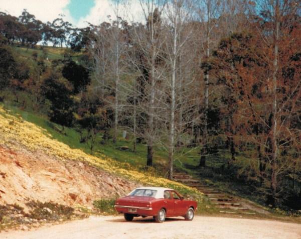 Cortina3-One Tree Hill