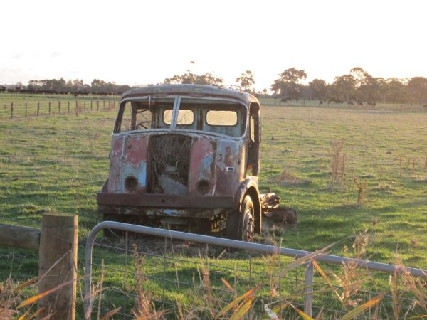 Old truck in paddock