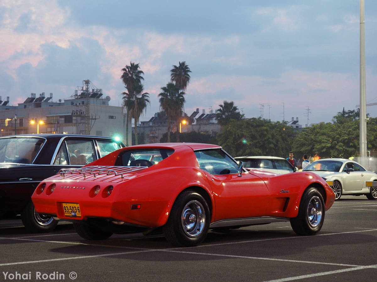 Image Result For C3 Corvette Girls Naked Sexxy Ride T-6419