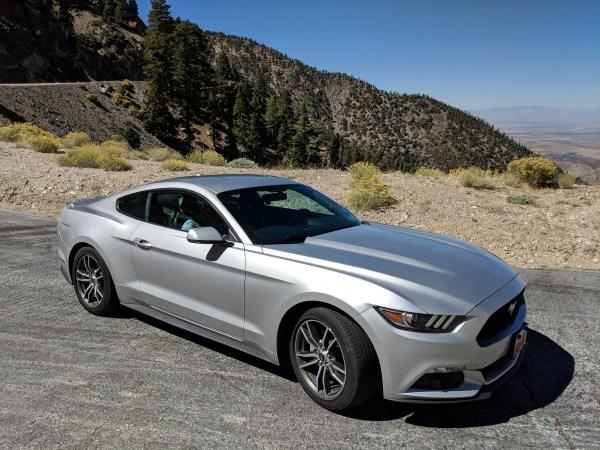 Buddy S Car Rental Review