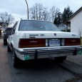 Foden Alpha left this comment with these pictures of his 1986 Cimarron: Finally decided to put on my custom made license plate frame for my Cimarron that I ordered last […]