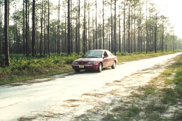 COAL: 1995 Ford Contour – Mondeo Man vs Florida Man