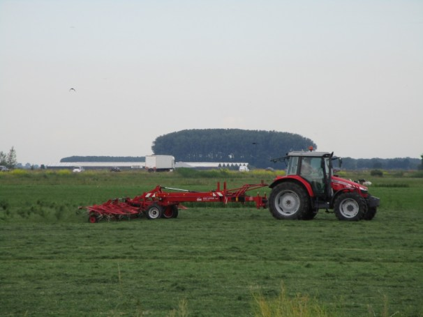 MF farm tractor