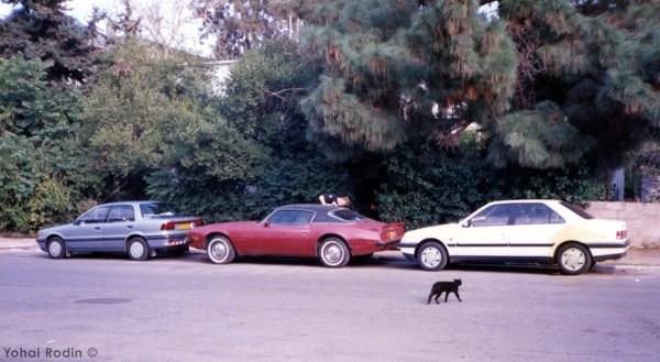 1974 Pontiac Firebird, 1991 Peugeot 405, 1989 Mitsubishi Lancer