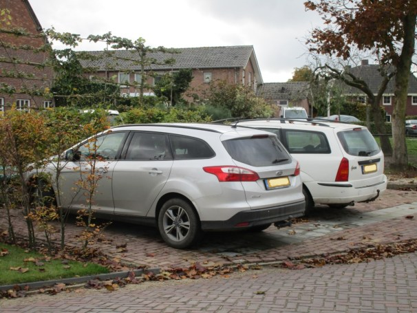 Ford Focus wagon duo - 2