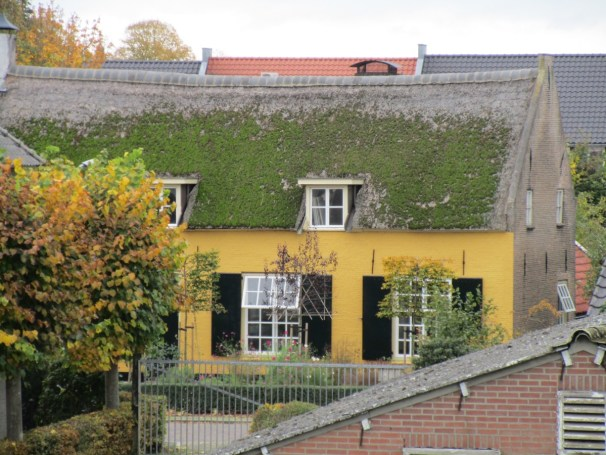 old yellow house - 1