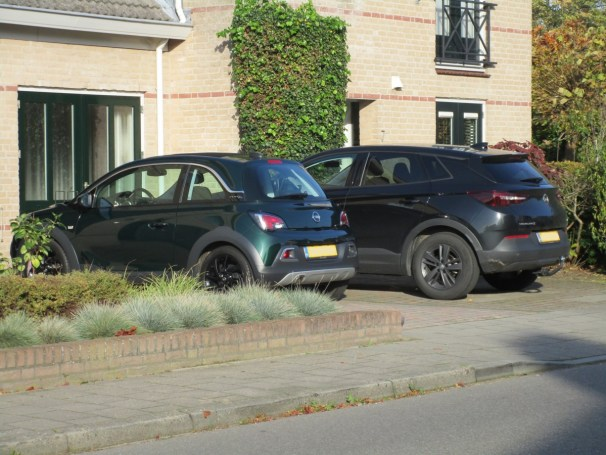 Opel Adam and Opel Grandland X