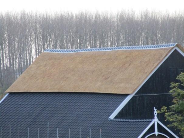 Farm house, job done - 3