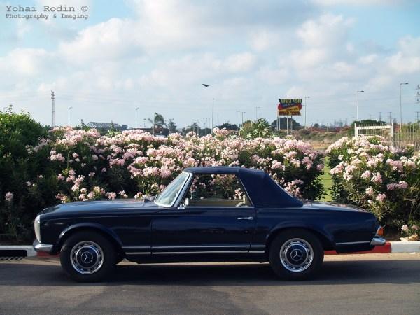 dark blue Mercedes-Benz W113