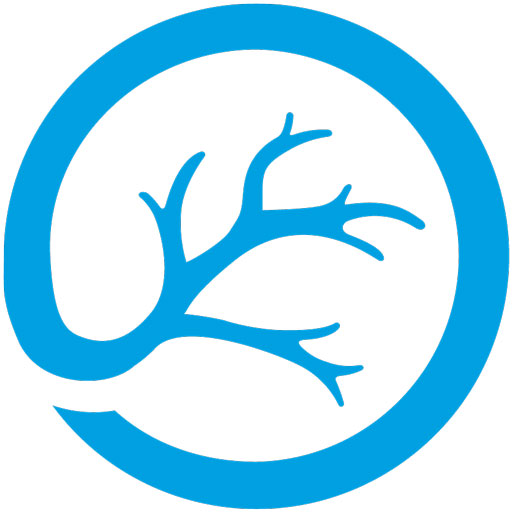 Choroideremia Research Foundation logo icon in blue