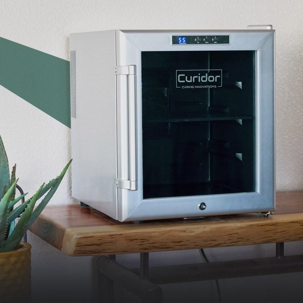 Curidor-web-edit