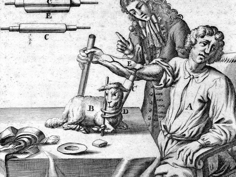 Transfusion sanguine avec du sang de mouton : quand la science tuait