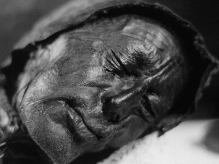 L'homme de Tollund fut sacrifié il y a 23 siècles