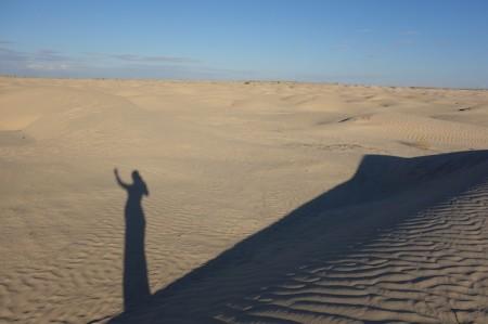 reve de dunes d'une curieuse voyageuse
