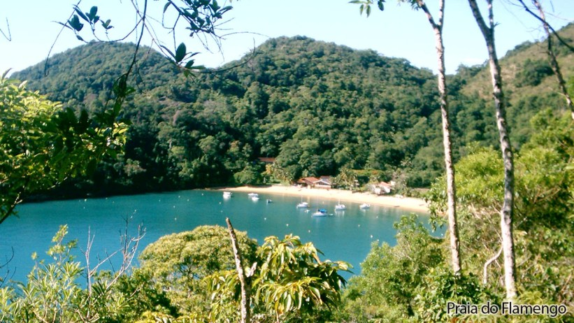 Praia do Flamengo - Ubatuba - Vista da Trilha