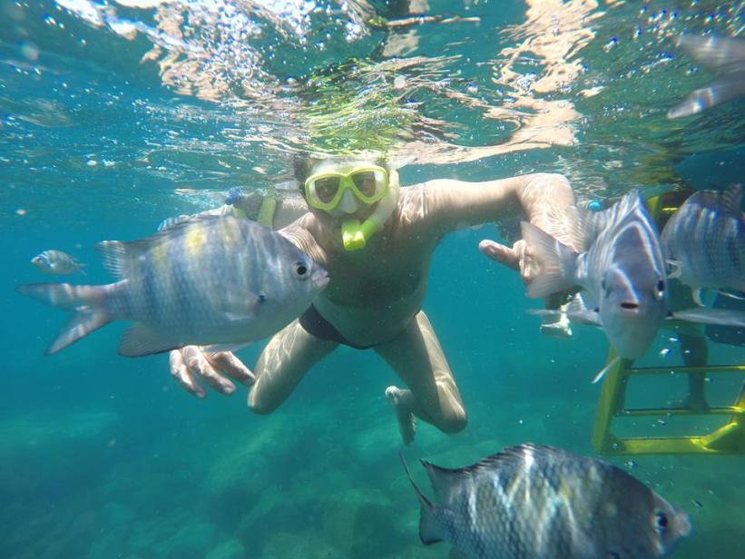 Barquario - sob a água