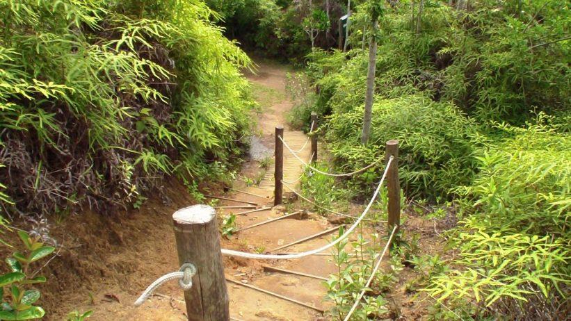 Ilha Anchieta - Mirante do Boqueirão