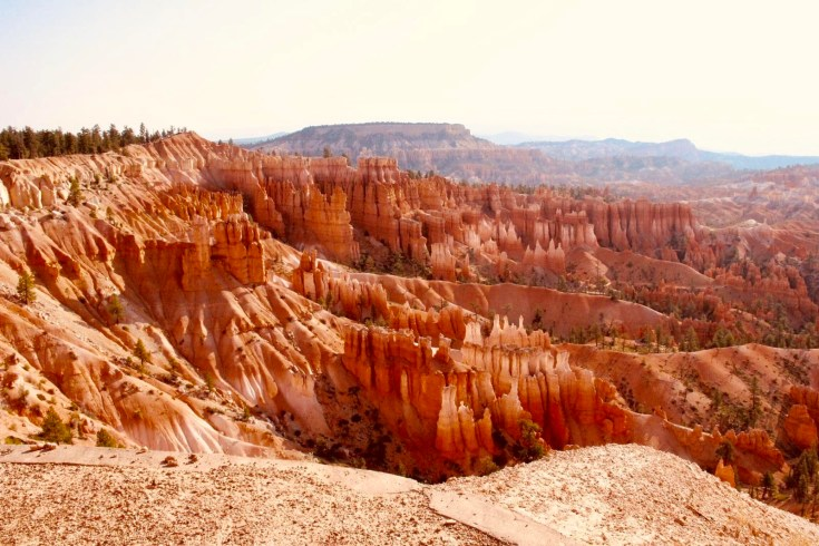 PARCHI, BRYCE CANYON