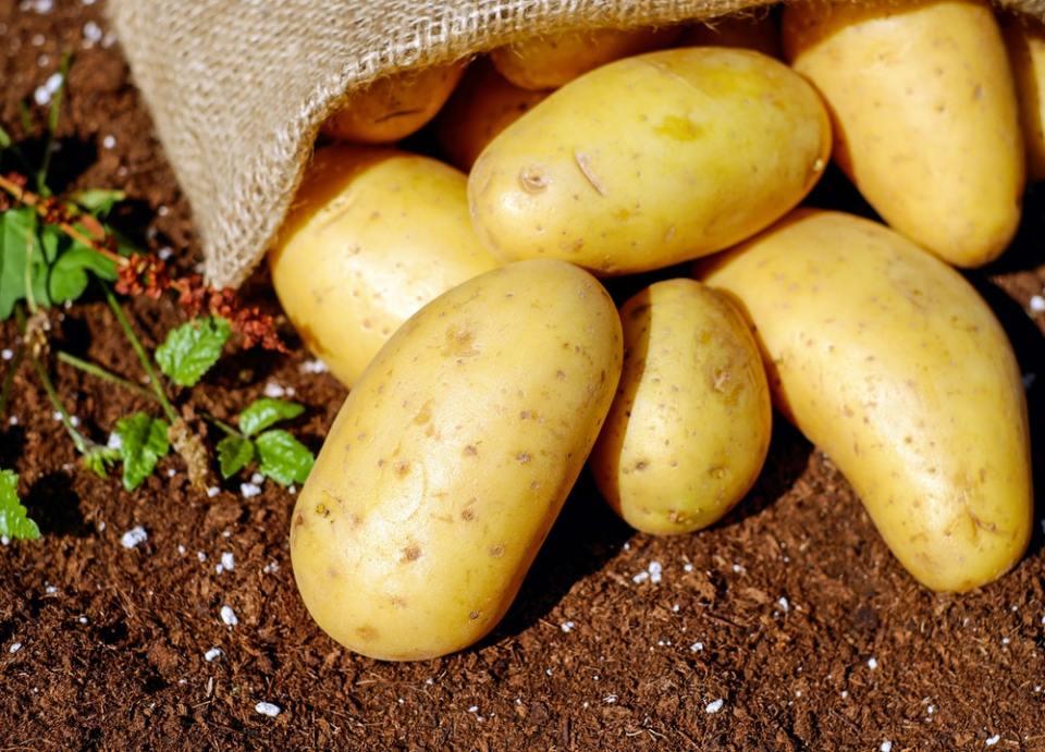 Las patatas y legumbres son carbohidratos buenos para el cuerpo