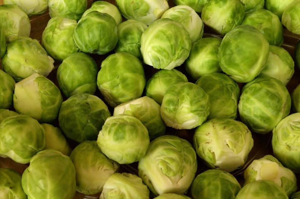 Coles de Bruselas, una de las verduras que no pueden faltar en la dieta de tus hijos