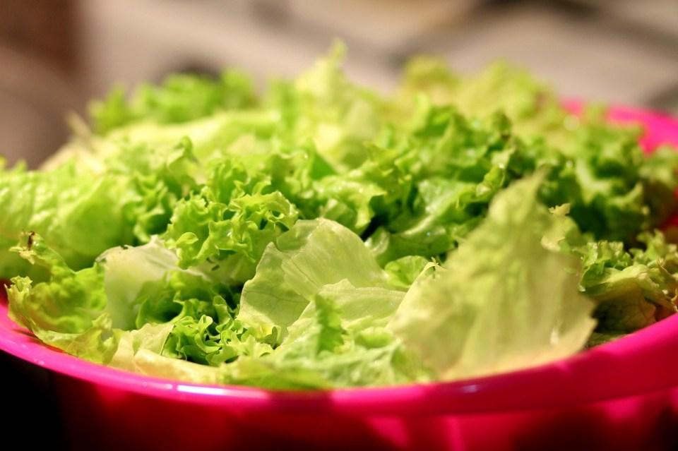 Lechuga. una de las verduras que no pueden faltar en la dieta de tus hijos