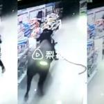 Búfalo a punto de ser sacrificado escapa, entra a supermercado y ataca a mujer embarazada