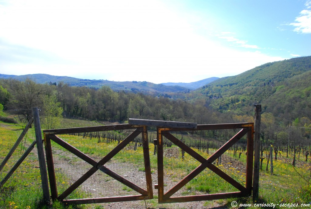 roadtrip-italie-chianti