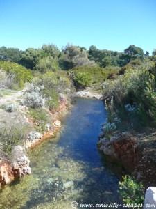 étang île Ste Marguerite