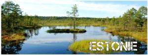 articles sur l'Estonie