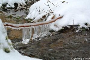 Bâton de bois piégé dans la glace