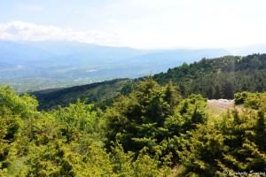 Paysage verdoyant sur le mont Vodno, Skopje