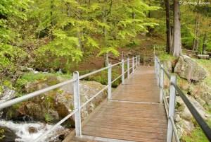 Passerelles d'accès aux chutes de Todtnauer, Forêt Noire