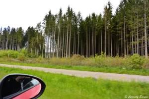 Roadtrip en Forêt Noire, Allemagne