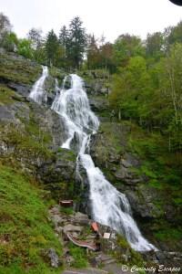 Les chutes de Todtnauer en Forêt Noire