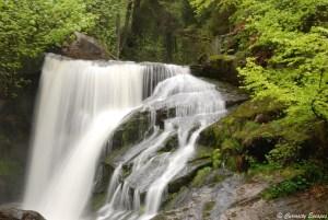 Chutes de Triberg, Forêt Noire