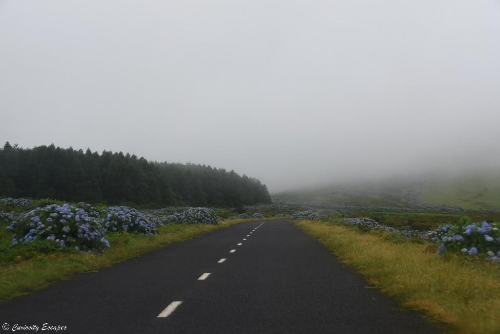 Brouillard sur Flores, Açores