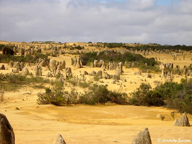 Désert de Pinnacles, Australie Occidentale