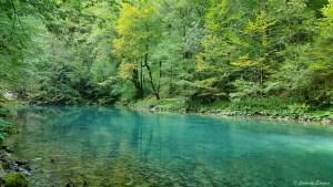 Source Izvor Kupe dans le parc national de Risnjak