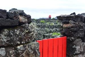 Vignes volcaniques de l'île de Pico