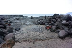 Rola pipas sur l'île de Pico