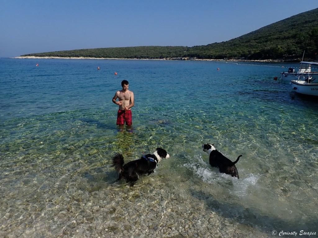 Plage pour chien au camping de chiens en Croatie