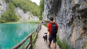Les lacs de Plitvice avec son chien