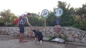 Douche pour chiens au camping en Croatie