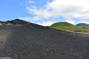 Coulée de lave noire sur l'île verte de Faial, les Açores