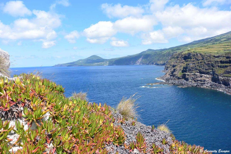 L'île de Faial vue depuis Castelo Branco