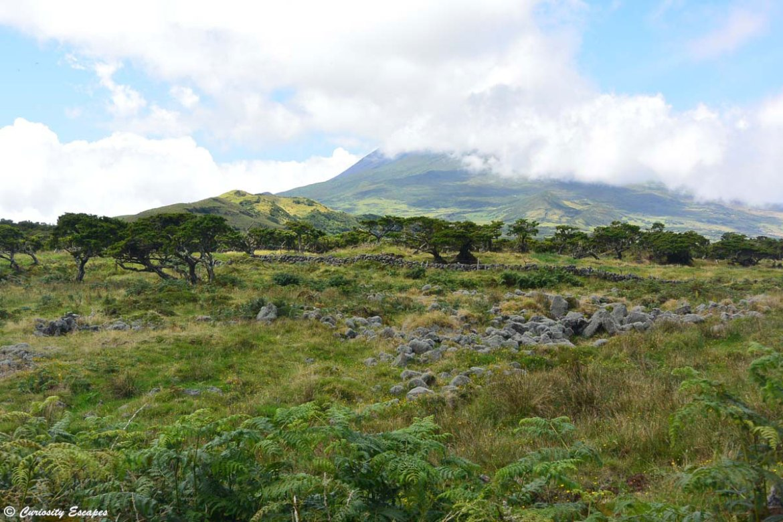 Le mont Pico dans les nuages, Açores