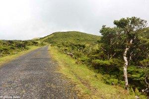 Les routes de l'île de Pico aux Açores
