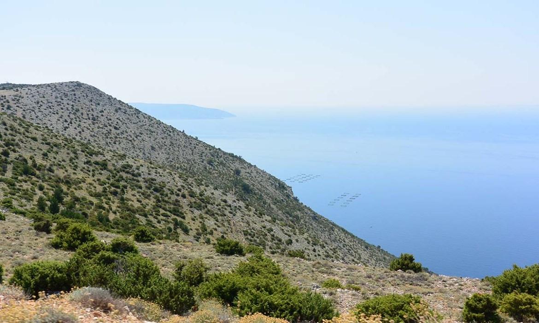 Parcs à huîtres sur l'île de Cres, Croatie